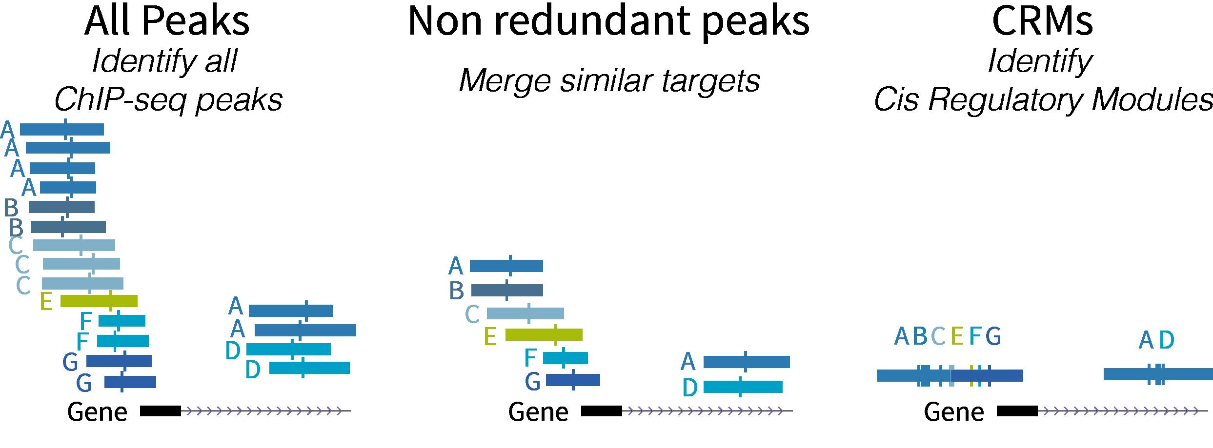 Schematic diagram data types
